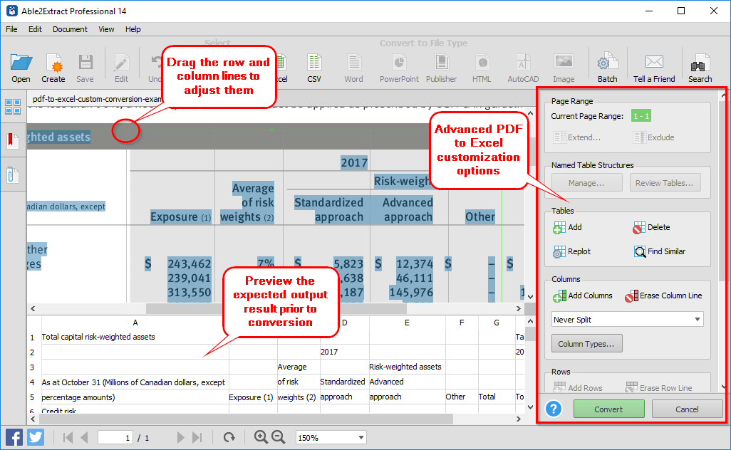 PDF to Excel conversion customization